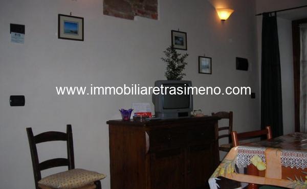 Oliveto_di_Teodora_Girasole_16