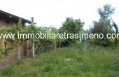 TE4, Terreno edificabile ed agricolo